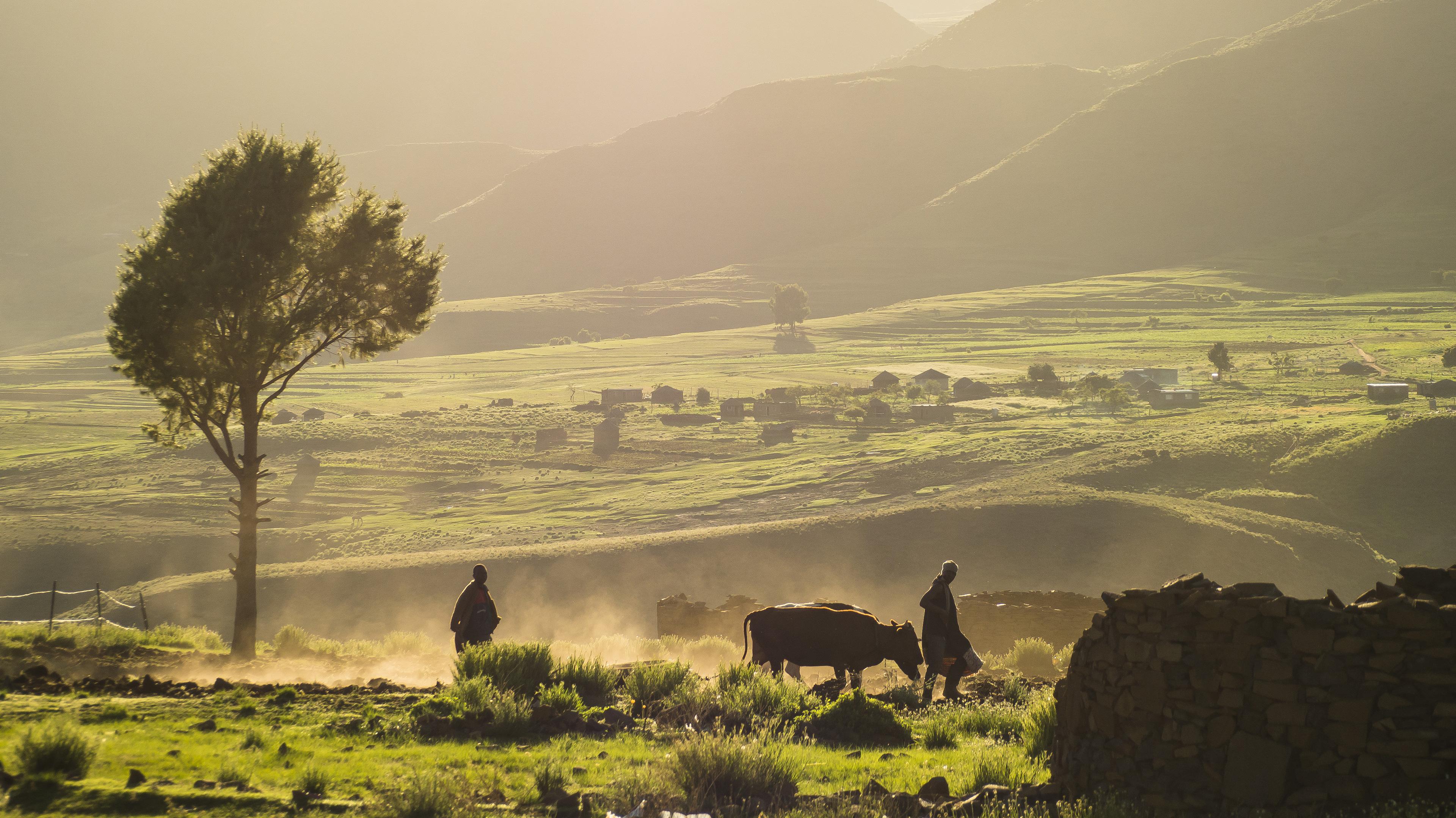 rural-subsistence-farming-hero